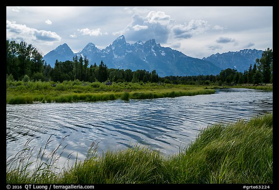 Teton Range in summer from Schwabacher Landing, afternoon. Grand Teton National Park (color)