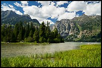 Grassy inlet, Phelps Lake. Grand Teton National Park ( color)