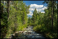 Lake Creek, Laurence S. Rockefeller Preserve. Grand Teton National Park ( color)
