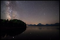 Trees, Milky Way and Teton Range above Jackson Lake. Grand Teton National Park ( color)