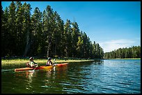 Kayakers in forested inlet, Colter Bay. Grand Teton National Park ( color)