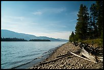 Beach, Colter Bay. Grand Teton National Park ( color)