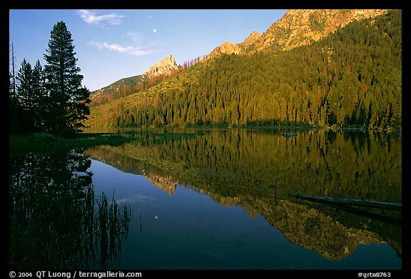 String Lake and Tetons, sunrise. Grand Teton National Park (color)