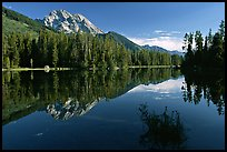 Mt Moran reflected in Leigh Lake, morning. Grand Teton National Park, Wyoming, USA.
