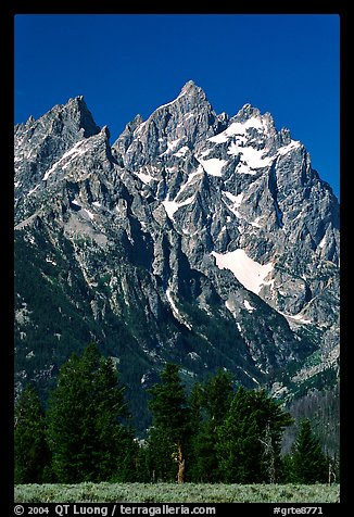 Rocky peaks of Cathedral group, morning. Grand Teton National Park (color)