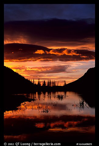 Sunrise with colorful clouds reflected on a pond in Horseshoe park. Rocky Mountain National Park (color)