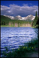 Windy morning, Sprague Lake. Rocky Mountain National Park ( color)