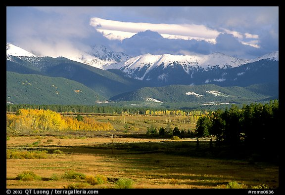 Fall color and mountain range. Colorado, USA (color)