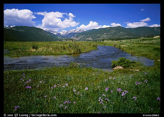 Wildflowers, meadow, and stream, Many Parks. Rocky Mountain National Park (color)