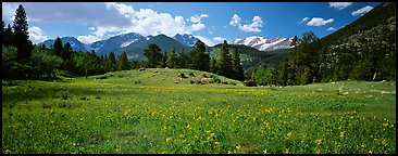 Summer mountain landscape. Rocky Mountain National Park (Panoramic color)