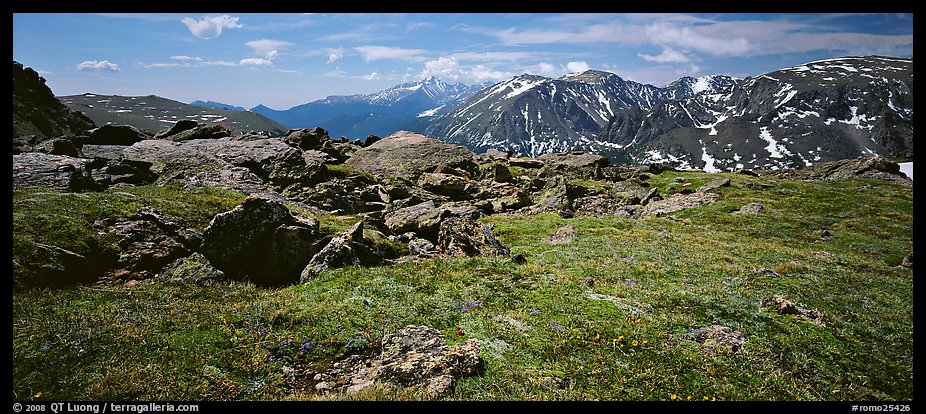 Alpine tundra scenery. Rocky Mountain National Park (color)