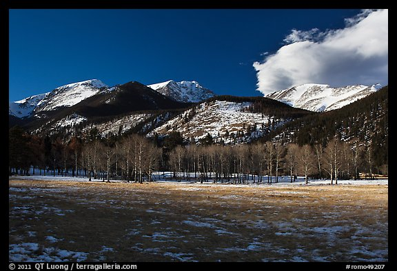 Aspens and mountains, West Horseshoe Park, winter. Rocky Mountain National Park (color)