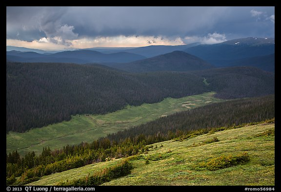 Valley under stormy skies. Rocky Mountain National Park (color)