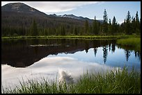 Beaver Pond, Kawuneeche Valley. Rocky Mountain National Park, Colorado, USA. (color)