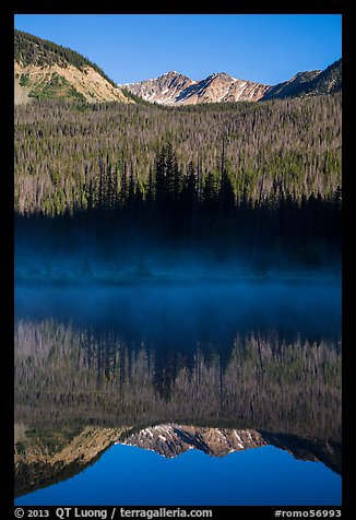 Never Summer Mountains reflected in beaver pond. Rocky Mountain National Park (color)