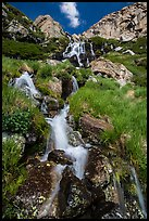 Alpine cascades. Rocky Mountain National Park ( color)