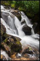 Stream cascading over rocks. Rocky Mountain National Park ( color)