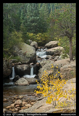 Upper Copeland Falls in autumn. Rocky Mountain National Park (color)
