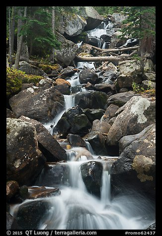 Calypo Cascades, Wild Basin. Rocky Mountain National Park (color)