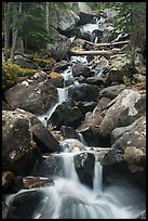 Calypo Cascades, Wild Basin. Rocky Mountain National Park ( color)