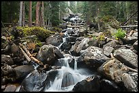 Stream flowing over boulders at Calypo Cascades. Rocky Mountain National Park ( color)
