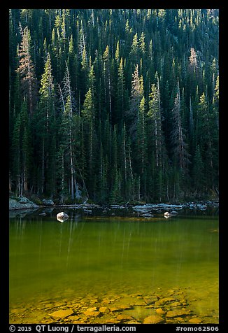 Boulders and forest on Dream Lake shore. Rocky Mountain National Park (color)