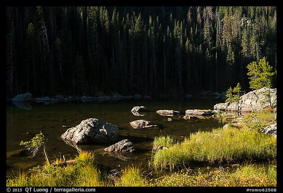 Grasses, boulders, lakeshore, Dream Lake. Rocky Mountain National Park (color)
