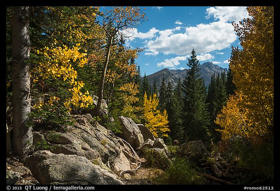 Longs Peak seen from forest opening in autumn. Rocky Mountain National Park (color)