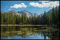 Longs Peak reflected in Nymph Lake. Rocky Mountain National Park ( color)