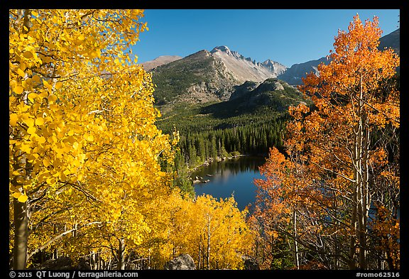 Autumn foliage above Bear Lake. Rocky Mountain National Park (color)