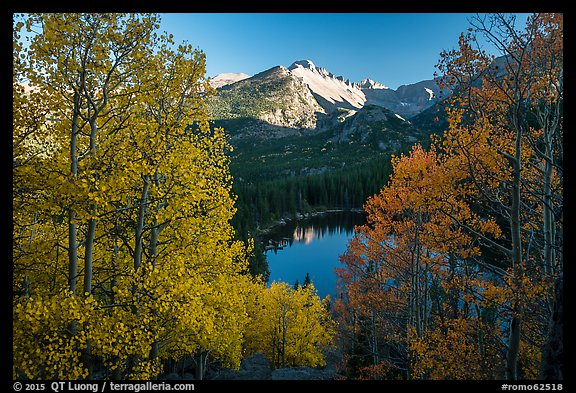 Longs Peak rising above Bear Lake and aspens in autumn foliage. Rocky Mountain National Park (color)