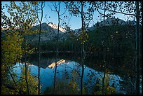 Bear Lakes and Longs Peak through trees with autumn leaves. Rocky Mountain National Park ( color)