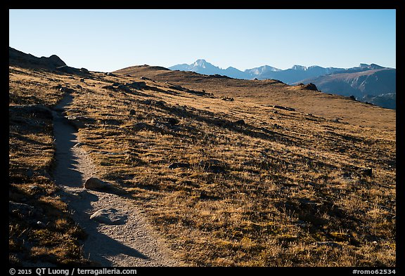 Ute Trail crossing alpine tundra. Rocky Mountain National Park (color)