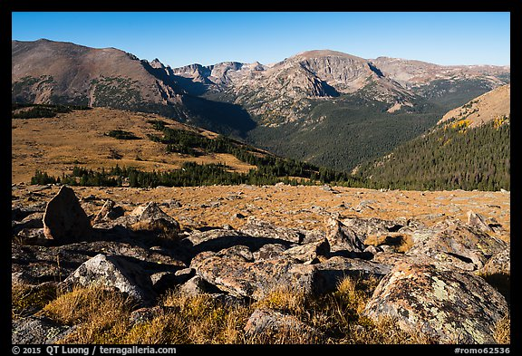Boulders and Forest Canyon. Rocky Mountain National Park (color)