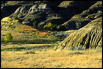 Badlands and prairie in North unit. Theodore Roosevelt National Park ( color)