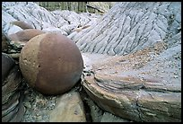 Cannonball concretion, North Unit. Theodore Roosevelt National Park, North Dakota, USA. (color)