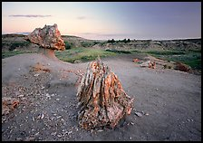 Pedestal petrified log and petrified stump sunset,. Theodore Roosevelt National Park ( color)