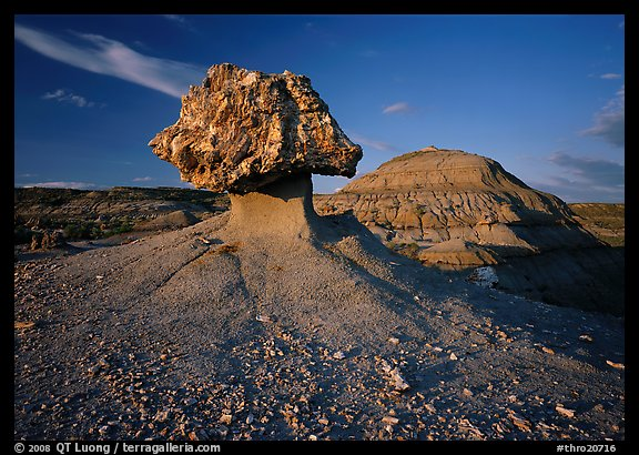 Pedestal petrified log and badlands, late afternoon. Theodore Roosevelt  National Park (color)