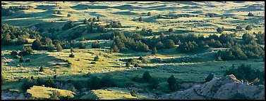 Landscape of prairie, badlands, and trees. Theodore Roosevelt National Park (Panoramic color)