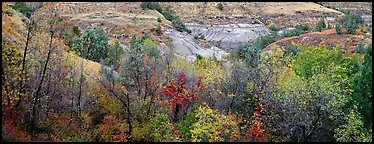 Badlands landscape in autumn. Theodore Roosevelt National Park (Panoramic color)
