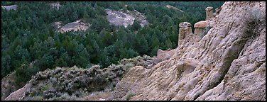 Badlands, caprock chimneys, and forest. Theodore Roosevelt National Park (Panoramic color)