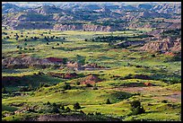 Grasslands and badlands, Painted Canyon. Theodore Roosevelt National Park ( color)