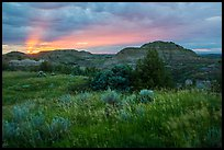 Sunset over grasses and badlands. Theodore Roosevelt National Park ( color)