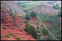 Red soil, Scoria Point. Theodore Roosevelt National Park, North Dakota, USA. (color)