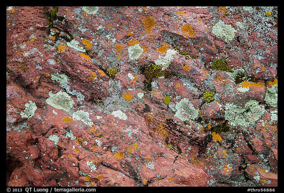 Close-up of red rocks with lichen. Theodore Roosevelt National Park (color)