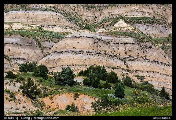 Badlands strata. Theodore Roosevelt National Park (color)