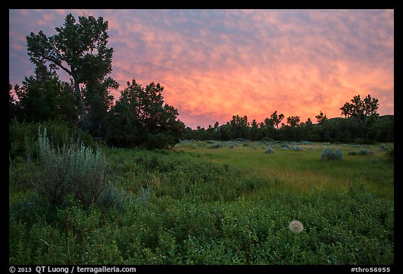 Meadow and colorful sunset clouds, Elkhorn Ranch Unit. Theodore Roosevelt National Park (color)