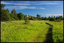 Trail through meadow, cottowoods and distant badlands, Elkhorn Ranch Unit. Theodore Roosevelt National Park ( color)