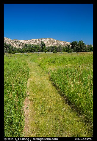Grassy faint trail and badlands, Elkhorn Ranch Unit. Theodore Roosevelt National Park (color)