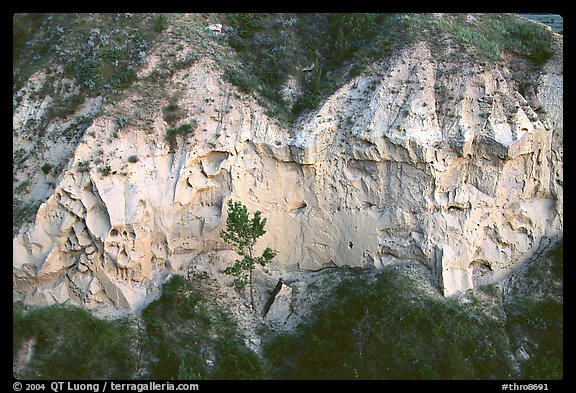 Wind Canyon walls. Theodore Roosevelt National Park (color)